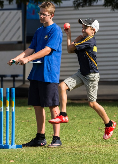 Blitz Cricket, Milford Primary School, Thursday, March 23, 2017. Photo: David Rowland / www.phototek.nz