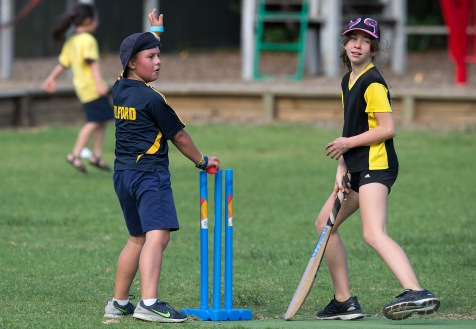 Blitz Cricket, Milford Primary School, Thursday, March 23, 2017.Photo: David Rowland / One-Image.com