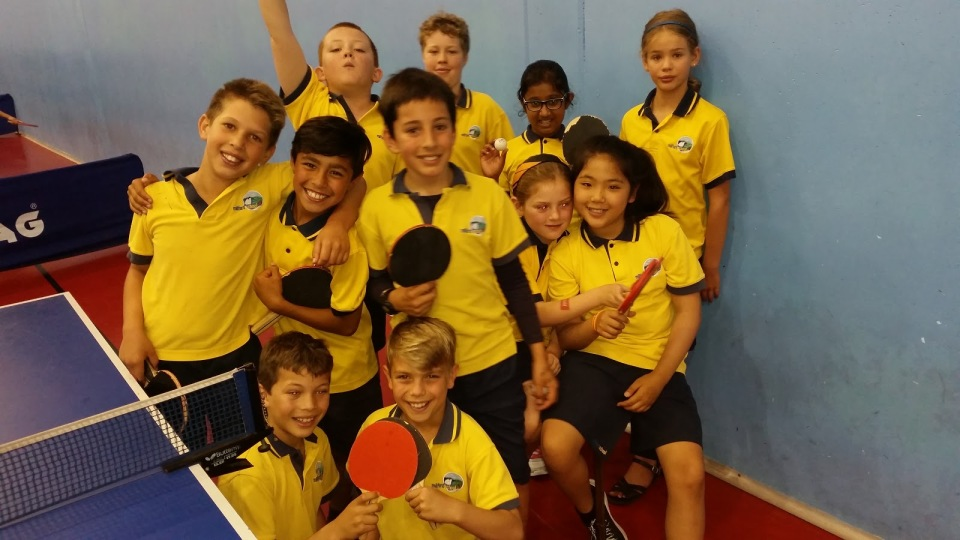 2017 Table Tennis teams